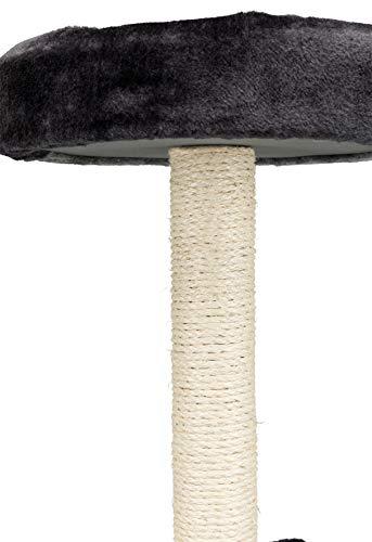 Trixie 43712 Tarifa Kratzbaum, 52 cm, grau/schwarz - 5