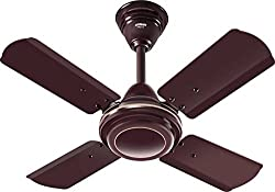 Eveready FABM 600 mm Ceiling Fan (Brown) (24 IN, Brown)