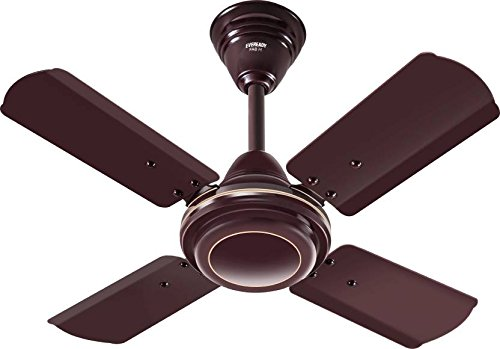 Eveready FABM 600 mm Ceiling Fan (24 In, Brown)