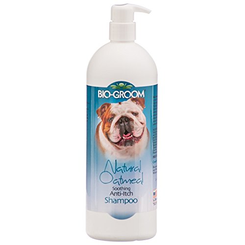 Artikelbild: Bioderm Laboratories Natural Oatmeal AntiItch Dog Shampoo with Pump Cleanser Qt