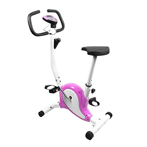 OUTAD Cyclette da Allenamento Home Trainer Exercise Bike Display LCD Confortevole Spugna Regolabile Altezza Sella Indoor Trainer Bike (Porpora)