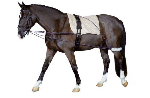 Longierhilfe Bodenarbeit Ausbildung Pony und Kleinpferde  Longiersystem Warmblut   Longier-und Trainingssystem   Longieren Hilfszügel