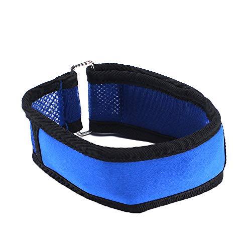 LCM Collar de enfriamiento del Golpe de Calor del Animal doméstico, Cadena del Perro, Collar del Perro, Collar del Animal doméstico, artefacto de enfriamiento