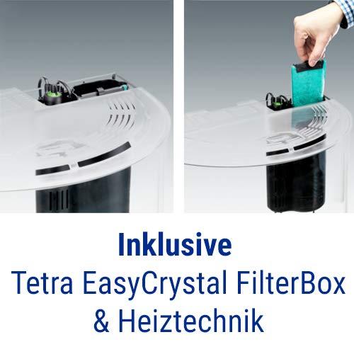 Tetra AquaArt Explorer Line Aquarium Komplett-Set 60 Liter anthrazit (gewölbte Frontscheibe, langlebige LED-Beleuchtung, ideal für die Haltung von tropischen Zierfischen) - 6