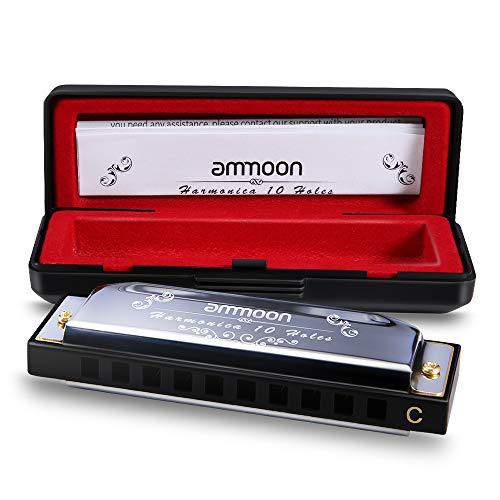 Ammoon armonica a bocca, harmonica blues 10 fori 20 toni c key con caso di archiviazione per bambini principianti studenti regalo musicale (argento)