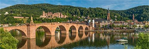 Bis 3 Meter Breite! XXL Panorama Farbdia, Alte Brücke Heidelberg am Nachmittag, zur Hinterleuchtung versandfertig gerollt, Wechselmotiv Bild für unsere LED Acrylglas Leuchtbilder