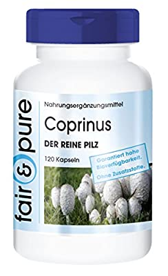 Coprinus 650mg - The Pure Mushroom (Coprinus Comatus) - In Pure Form - No Additives or Excipients - 120 Vegetarian Capsules by fair & pure