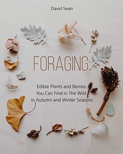 Ebooks Foraging: Edible Plants and Berries You Can Find in The Wild in Autumn and Winter Seasons Descargar PDF