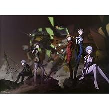 Evangelion Poster On Silk <49cm x 35cm, 19inch x 14inch> - Cartel de Seda - D853CF