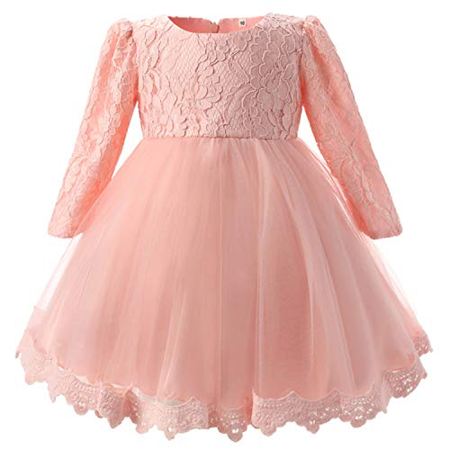TTYAOVO Baby Girls Embroidered Tulle Flower Princess Bridesmaid Wedding Birthday Party Long Sleeves Dress