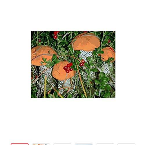 ERTQA landschaftsbild malen auf leinwand DIY digitales ölgemälde malen nach Zahlen Blumen Handzeichnung färbung nach Zahlen 40x50cm