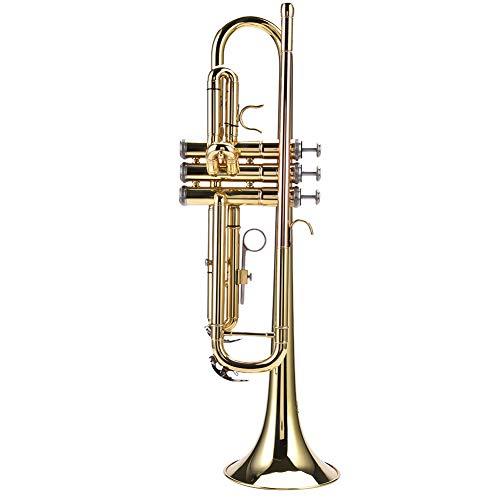 Dilwe Trompeta, Profesional Latón Estudiante BB Plano Trompeta Instrumentos de Viento Kit con Boquilla Correas Limpiar Set Bolsa