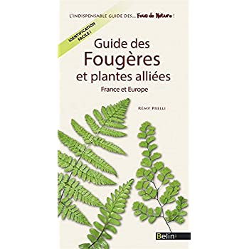 Guide des Fougeres et Plantes Alliees de France et d'Europe