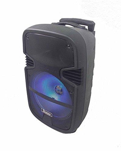 Altavoz Portatil Trolley Bluetooth, Karaoke Con Microfono, Radio, USB Rx-1010
