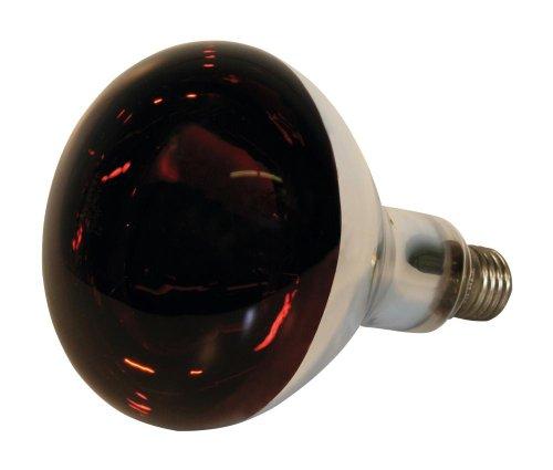 Kerbl 22244 Infrarotlampe Hartglas, 150 W, rot (Watt-rot-lampe)