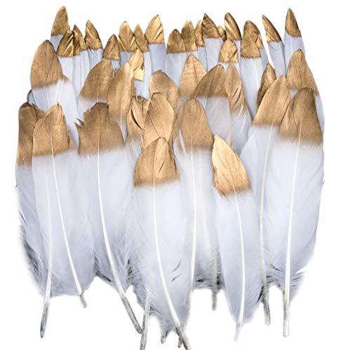 Vidillo Bunte Federn, 40 Stück Gold getauchtes natürliches Weiß Gänsefedern, ideal als Dekoration zum Karnival für Halloween Fest Masken, Kostüme und Basteln für Kinder, Sicher und Ungiftig