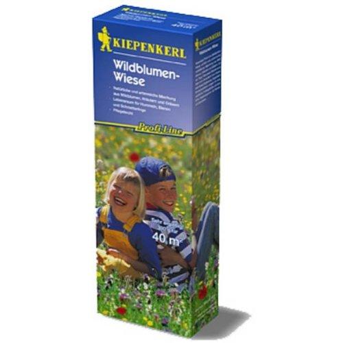 Kiepenkerl Kiepenkerl Wildblumen-Wiese
