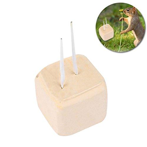 UEETEK Grinder di Pietra Minerale Giocattolo masticazione Denti per Criceto Rat Chinchilla Coniglio