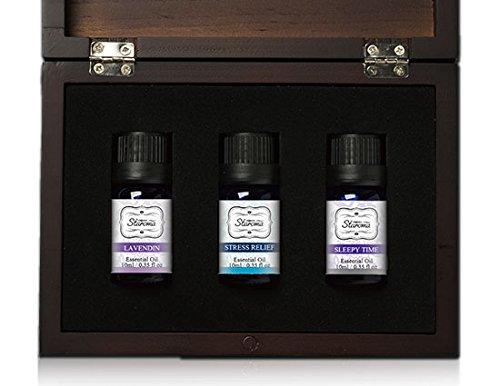 Raumduft Geschenkset Duftöl intensiv Raumduft Aromaöl Aromatherapie Raumduft Diffuser Duftstövchen naturrein essential (Gute Zeit) -