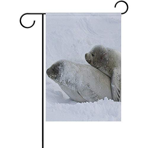 Mesllings Seals Family On The Ice Decorative Garden Flagge Banner Polyester Welcome Seasonal Indoor Outdoor 12