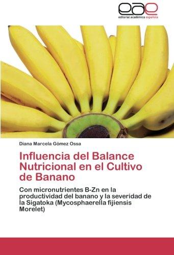 Influencia del Balance Nutricional En El Cultivo de Banano por Gomez Ossa Diana Marcela
