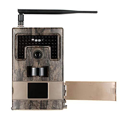 Hinterkamera, 1080P-Wildkamera mit Nachtsicht, wasserdicht, 12 MP, 120 Grad Bewegung aktiviert
