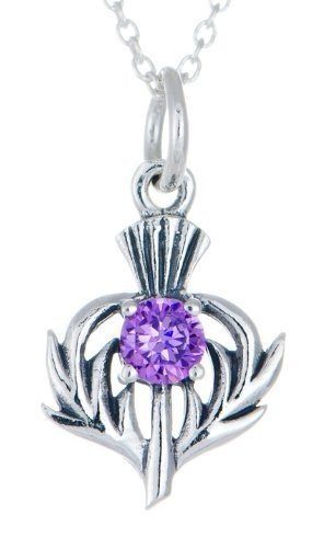 Womens Thistle (Toucan Women's Sterling Thistle Birthstone Pendant Necklace Jewellery February)