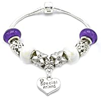 Special Friend Silver Plated Birthday Charm Bracelet with Gift Box Women's Jewellery