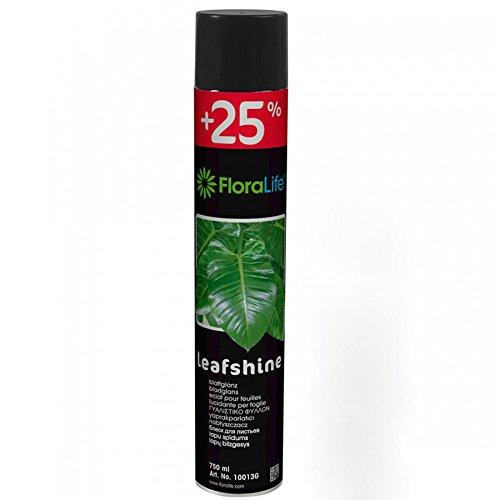 FLORALIFE Blattglanz Spray 750ml Oasis Banana Leaf House
