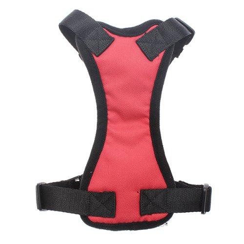 Hochwertig Klein Einstellbare Haustier Fahrzeugsicherheit Brustgurt - Letter Black