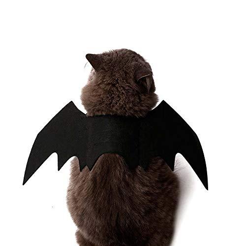 Alftek zucche di halloween costume da gatto vestito collare campana nero ali di pipistrello per cucciolo di cane gatto