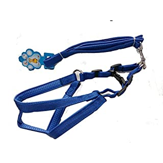Adjustable Harness For Dogs with Leash