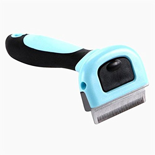 professionale-animale-domestico-strumento-pettine-animale-domestico-preparando-strumento-pennello-pe