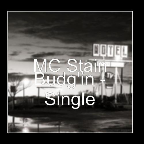 Budg'in - Single by MC Stain