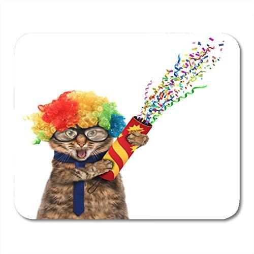 - Katze Trägt Ein Kostüm