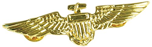 Aviator Pin, Metal Faux Gold, One Size