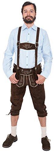 Alpenfashion Herren Lederhose Kniebund dunkelbraun (50)