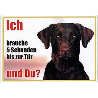 AkaPit Warnschild Warnschild Weimaraner ca. 21 x 15 cm laminiert wasserabweisend Motiv : Ich Brauche 5 Sekunden bis zur Tür und Du ? Verwendbar im Innen und Außenbereich