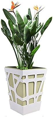 Sharpex Italian Plastic Square Planter, Modern Decorative Planter Pot for All House Plants Flowers, Herbs, Veg