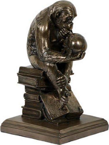 Affe mit Schädel bronziert Darwins Schädel Figur Sammelfigur