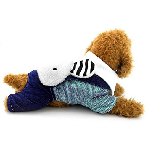 zunea Kleiner Hund Kleidung Cute Bunny Baumwolle gepolsterte Hundemantel vierbeinigen Jumpsuits Kaschmir (dieser Style Run klein, wählen Bitte eine Größe größer)