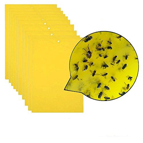 20 pièges collants jaunes double face,panneau collant d'insectes pour insectes volants,tels que moucherons fongiques, aleurodes,pucerons,mineuses,thrips et autres insectes volants