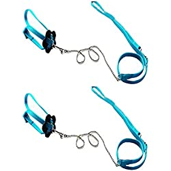 Bello Luna 2Pcs Adjustable Lizard Leash and Parrot Harness Leash - Blue