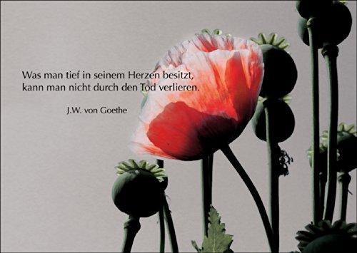 Trauerkarte: Was man tief in seinem Herzen besitzt, kann man nicht durch den Tod verlieren. (Goethe) - Beileidskarte Kondolenzkarte Trauer Beileid Grußkarte mit Mohn • auch zum direkt Versenden mit ihrem persönlichen Text als Einleger.