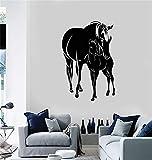 Wandworte Sprüche Entfernbare Beschriftung Pferde Fohlen Tiere Wohnzimmer Home Kunst