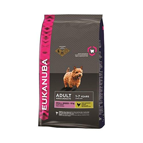 Eukanuba Premium Hundefutter für kleine Hunde, Trockenfutter mit Lachs & Reis (1 x 3 kg)