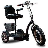 Triciclo Eléctrico Adultos - Silla de Ruedas Eléctrica Ciclomotor Scooter Movilidad Reducida Minusválido