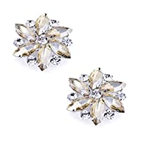 Premewish Crystal Dress Hat Shoe Decorations Clips Accessories Fashion Rhinestones Wedding Prom Party Shoe Clips