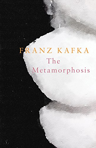 the details and descriptions that interpret the setting of kafkas novel the metamorphosis Discuss the ending of franz kafka's the metamorphosis is the reader left with a sense of hope or hopelessness support your conclusion with details from the story.