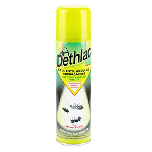dethlac-insecticidal-lacquer-250-ml-aerosol-controls-crawling-insects-and-bugs-such-as-ants-woodlice